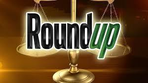 Full round up logo 2